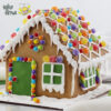 Spuit Wilton Bulat Wilton Round Tip Ideas 10 Gingerbread House Lattice Toko Firna