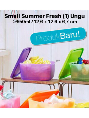 TUPPERWARE SMALL SUMMER FRESH PURPLE UNGU JUAL TUPPERWARE ONLINE TOKOFIRNA SATU SET